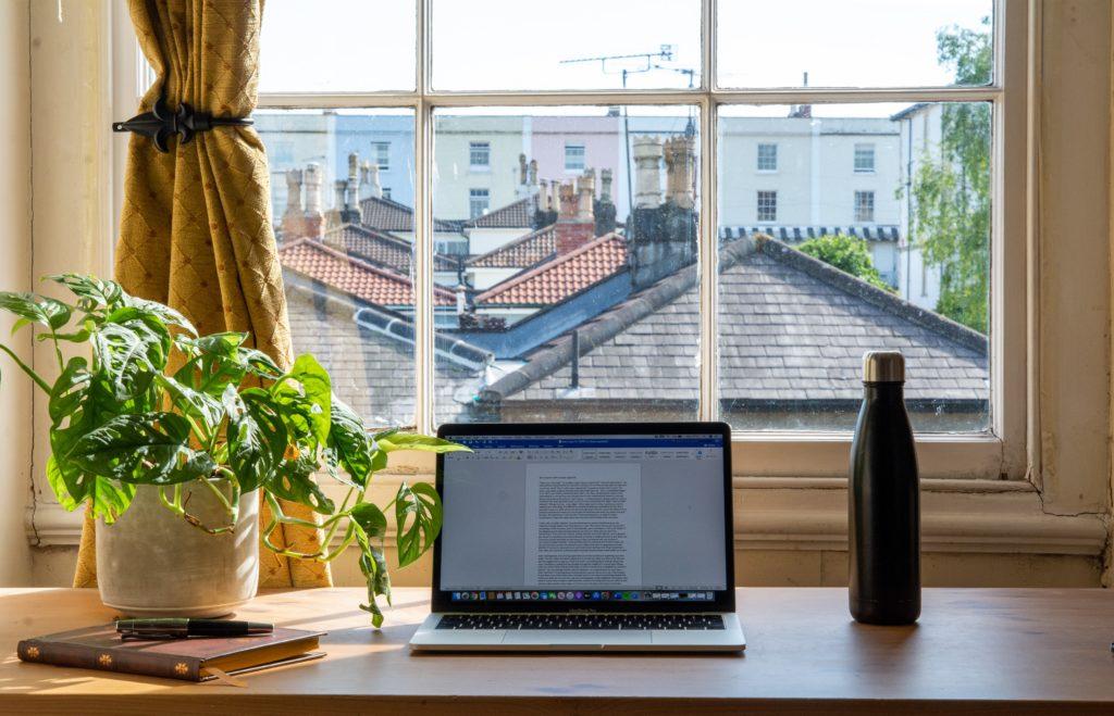 Laptop mit Zimmerpflanze vor einem Fenster